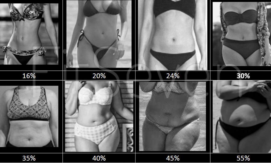 elveszíti a testzsír százalékát