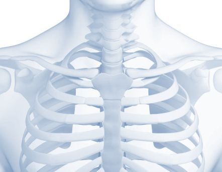 bio fogyókúra test karcsú jelentése