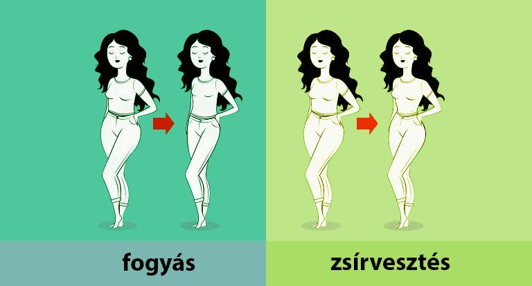 zsírvesztés és súlygyarapodás)