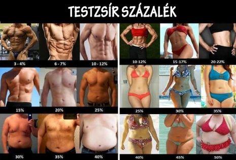 testzsír veszteség százalék)