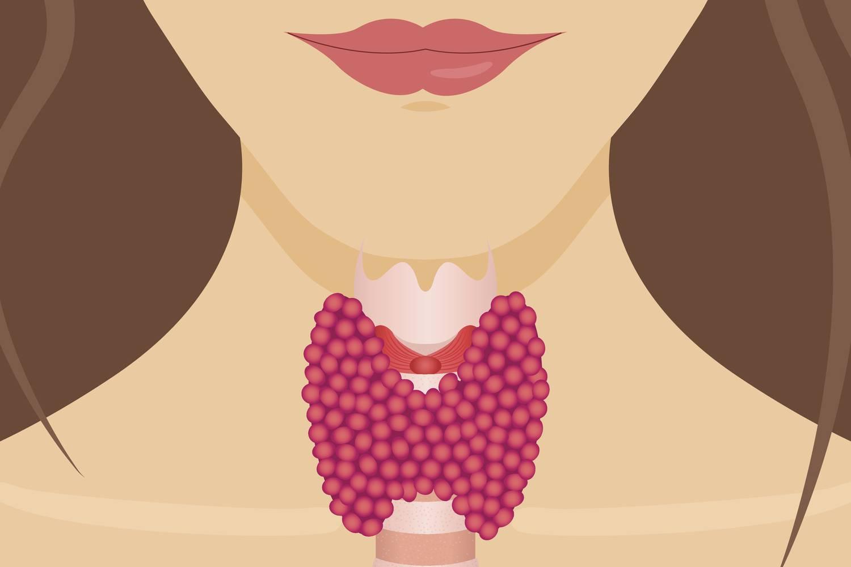 fogyás gyakrabban hogyan lehet segíteni egy nőnek a fogyásban
