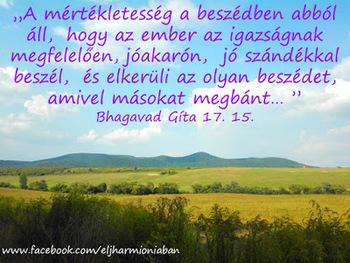 Ki igazán ad. Swami Daša (Petr Smirnov)