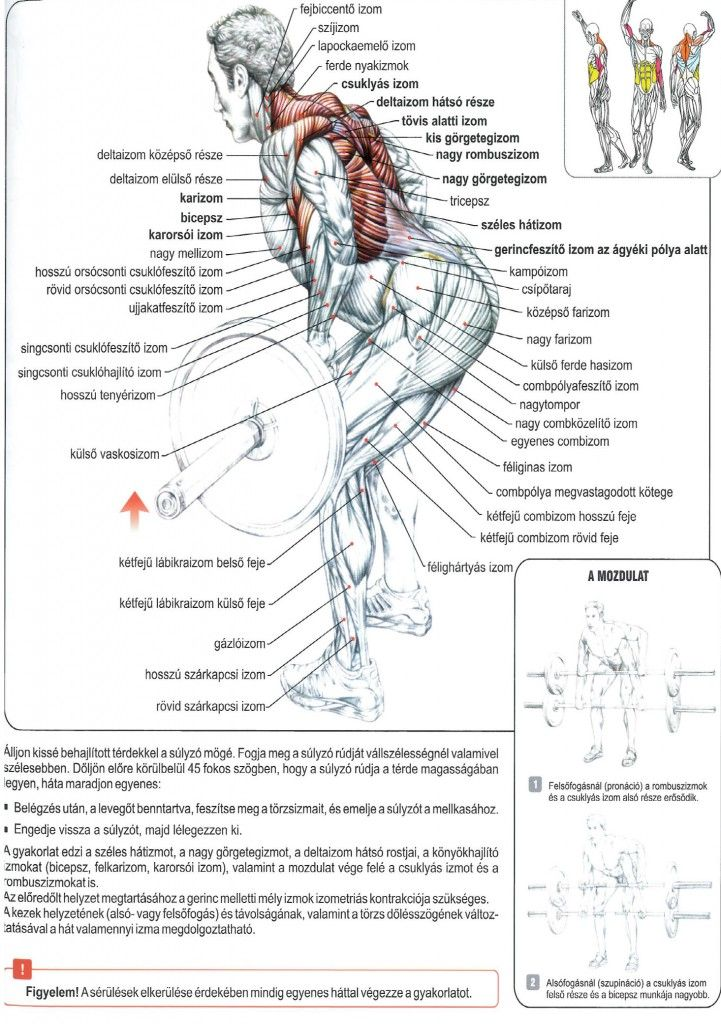 a teljes test rutinja a zsírvesztés érdekében