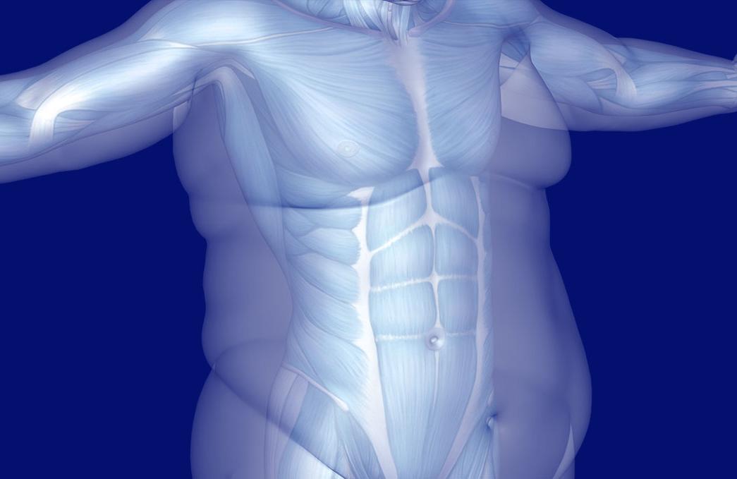 fogyjon 5 kg zsírt 2 hétig 2 napos zsírvesztés osztva