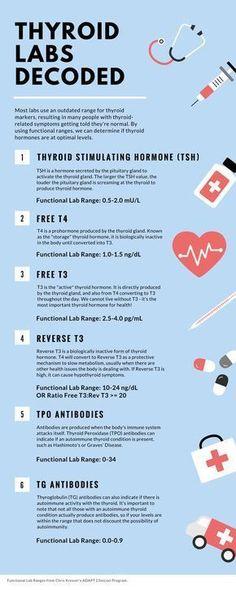 t3 vs t4 fogyás legjobb egészségügyi bárok a fogyáshoz