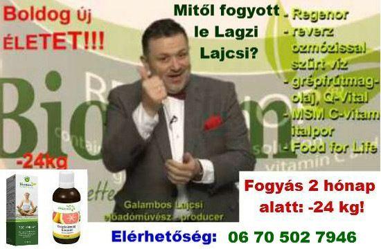 regenor vélemények)