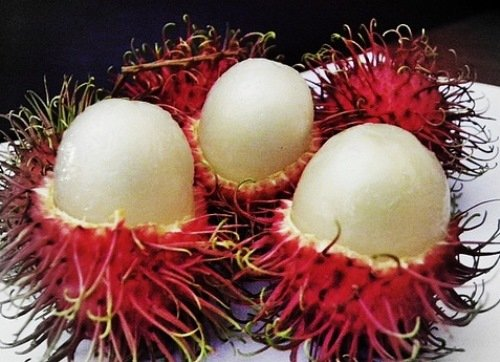 Egzotikus gyümölcsök: furcsák és finomak | Clean Eating Magyarország