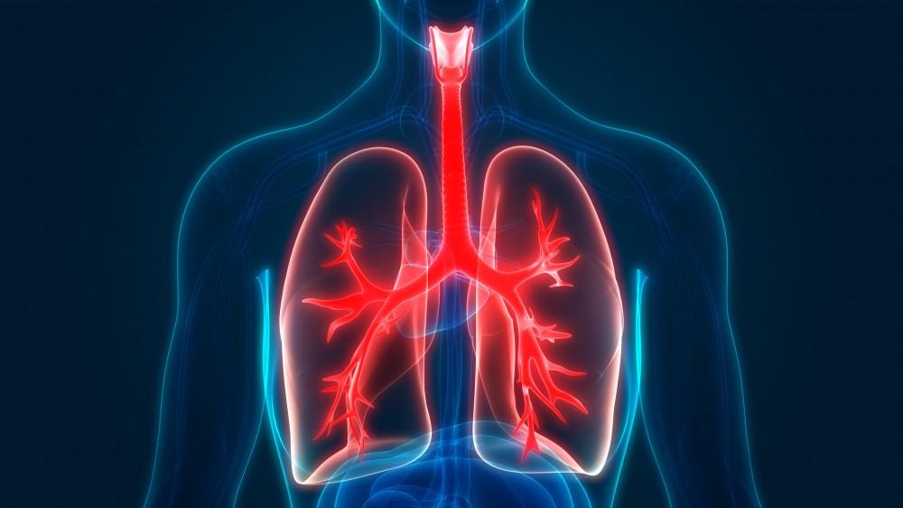 Pneumocystikus tüdőgyulladás HIV-fertőzött betegeknél: a kurzus jellemzői és a kezelés - Köhögés