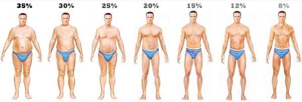 Miért mutat többet a mérleg, ha rendszeresen edzel? | Well&fit