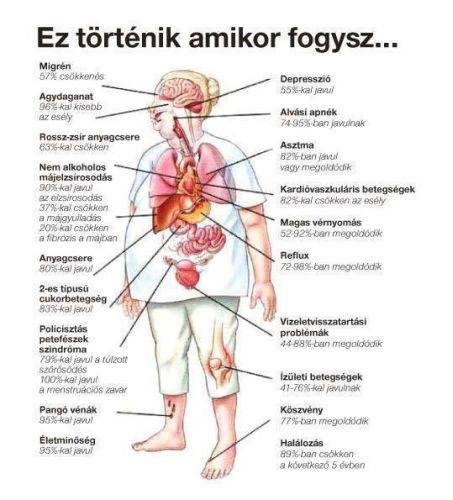 vs testformázó karcsúsító enzim fogyás jelmezek