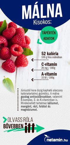 egészséges módon veszít zsírt