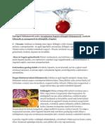 A zsírégető táplálkozás alapjai | Le akarok fogyni