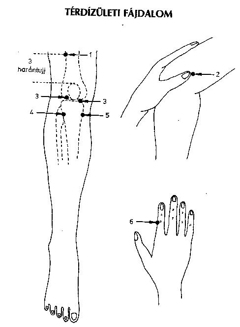 Gyógyító meridián pontok | Akupunktúra