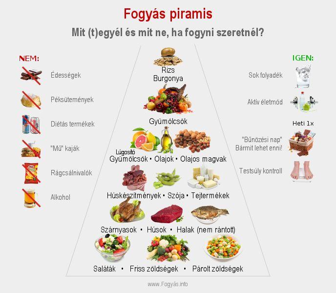 a legjobb fogyókúrák Hyderabadban zsírégetés glikogén helyett