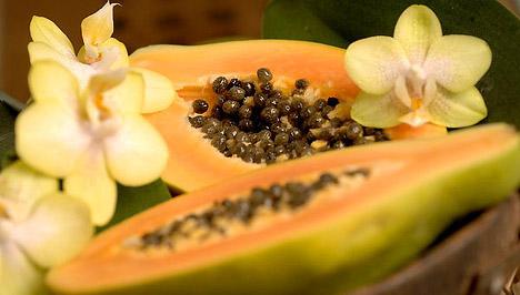 a papaya enzim segít a fogyásban)