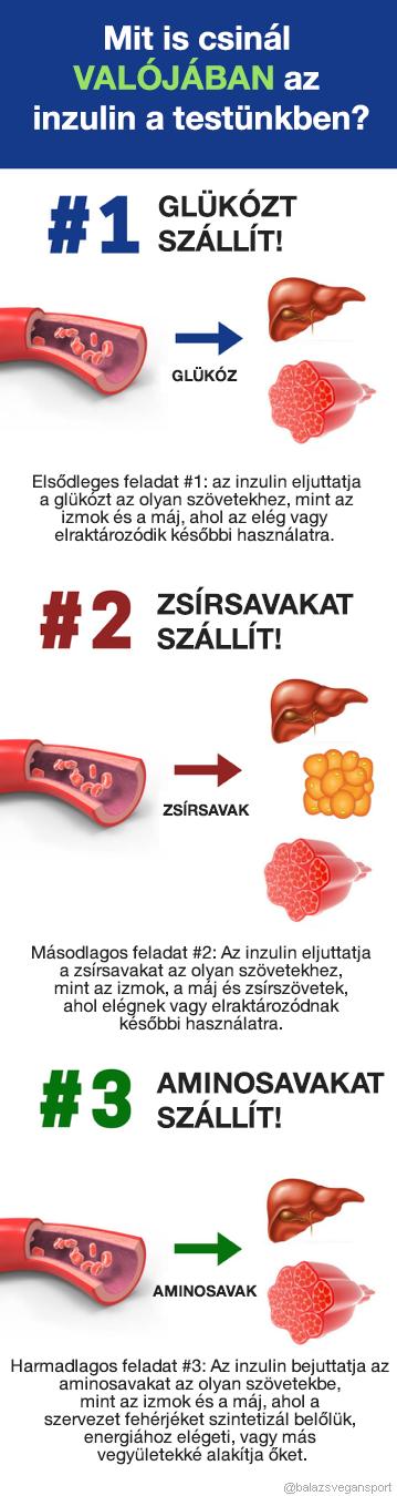 hypoglykaemia veszít zsírt