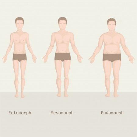 fogyni testtípusok